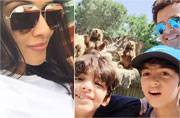 From Hrithik Roshan to Asin: This is where your favourite celebs are travelling to