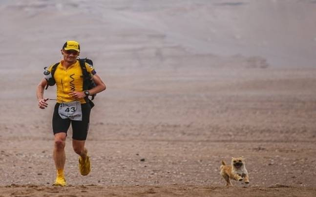 Marathoner and pup who ran with him