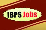 IBPS is hiring! Apply for 19243 clerk posts