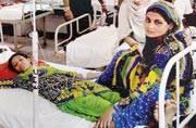 Delhi: Dengue and chikungunya cases on rise, 100 AIIMS doctors & kin fall ill
