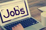 Commercial Tax Department is hiring for 27 Stenographer, other posts: Apply by September 16