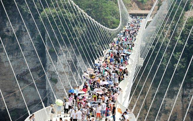 The glass bridge in China received 10,000 tourists a day since its opening. Photo: Reuters