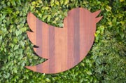 Forever alone? No partner in sight, Twitter faces tough solo choices