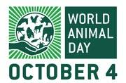 Today is World Animal Day: Here is all you need to know about it