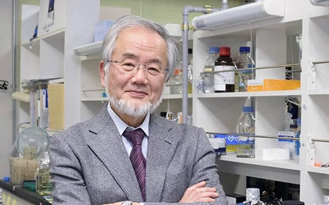 Professor, Yoshinori Ohsumi, Frontier Research Center, Tokyo Institute of Technology (Image: Tokyo Tech)