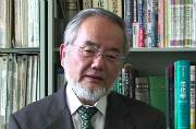 Nobel Prize in medicine awarded to Yoshinori Ohsumi for work on 'cell recycling'