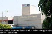 MP Professional Examination Board: 4041 job vacancies