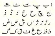 Student Islamic Organisation writes to MCI to conduct NEET in Urdu
