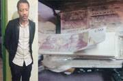 Nigerian scamsters reinvent scamming, dupe people over cancer cures and herbal seeds