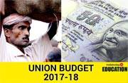 Aam Aadmi Budget 2017-18? People