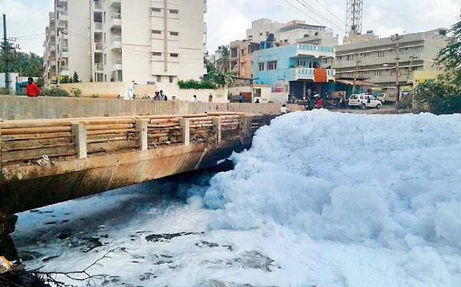 Bellandur Lake has faced the wrath of India's Silicon Valley, leading to alarming levels of pollution in the water body. (File Photo)