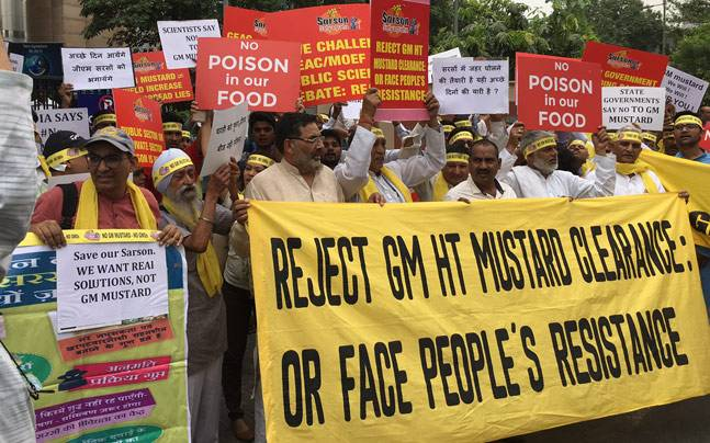 'Sarson Satyagrah' movement to oppose GM Mustard