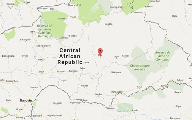 Dozens killed in Central African Republic despite ceasefire World News
