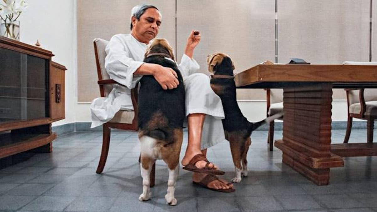 Odisha Chief Minister Naveen Patnaik: My work speaks for