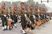 Delhi: 30 new Army dogs to guard city spots