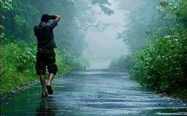 Picture courtesy: Pinterest/touristplacesinkerala.in