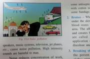 ICSE textbook shows mosque as source of noise pollution, sparks outrage