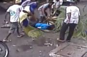 Mumbai woman dies after coconut tree falls on her, incident caught on CCTV