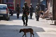Assam declared as disturbed area for another month by the Armed Forces: A look at the Special Powers Act