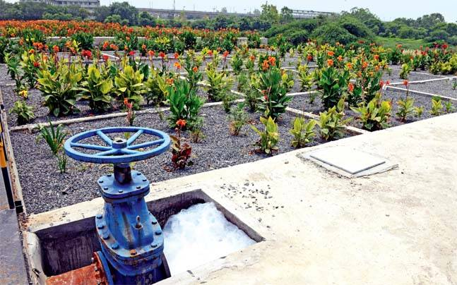 Flowery beds being developed