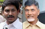 TDP, YSR Congress to lock horns in Nandyal assembly bypoll in Andhra Pradesh on Aug 23