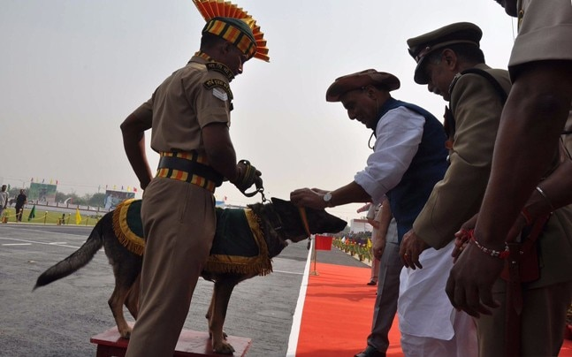 ITBP's sniffer dog Machhli recieves award from Rajnath Singh