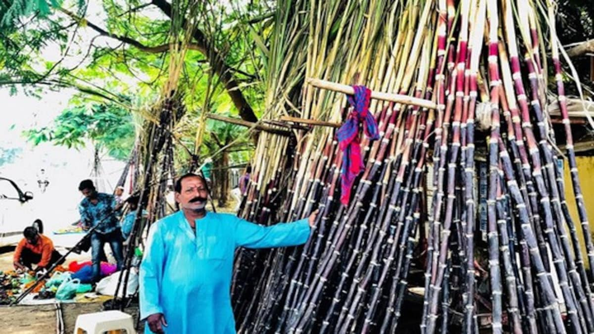 Here's why sugarcane is worshipped on Devotthan or