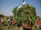 Madhya Pradesh govt sponsors 6-nation agriculture tour for farmers, Congress cries foul