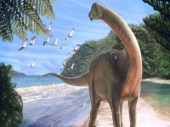After no luck for 250 years, gigantic bus-sized dinosaur fossil crops up in Egypt