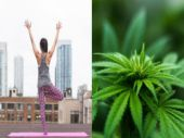 Believe it or not, Ganja Yoga is now a real thing