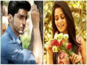 Sasural Simar Ka actress Dipika Kakar to romance Gurmeet Chaudhary in her next venture?
