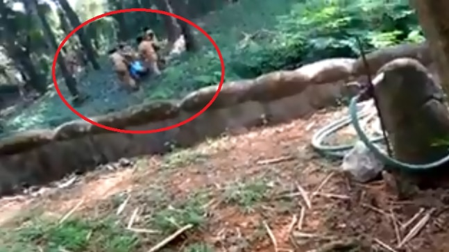 Man jumps into lion's cage at Thiruvananthapuram zoo