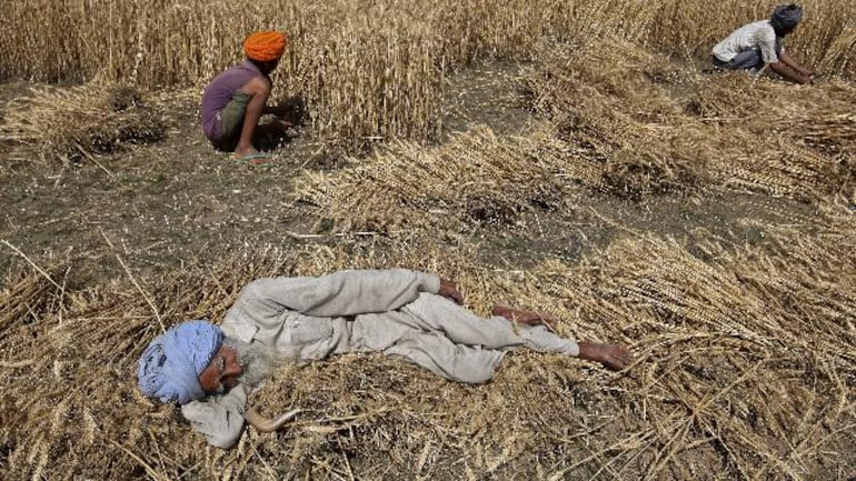 Punjab farmers say Minimum Support Price is an illusion to ...