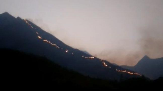 A forest fire raged in Kurangani hills in Theni district of Tamil Nadu