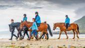 Horse trekking along the coast.
