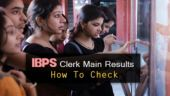 IBPS Clerk Main Results announced at ibps.in: Here's how to check