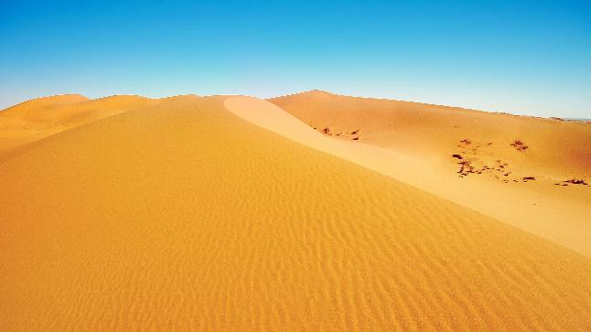 the sahara desert is expanding due to climate change and we are to