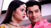 Reincarnation drama once again in Kasam; show to take a leap