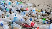 Govt declares all protected areas plastic-free, Greenpeace calls the move only 'symbolic'