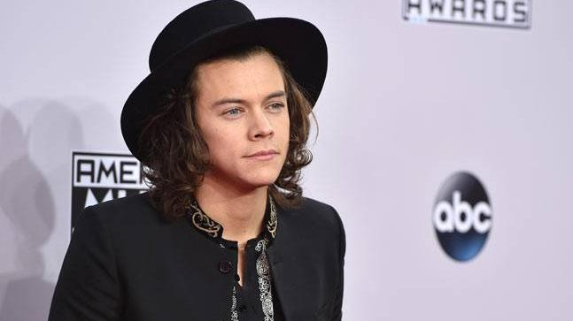 Harry Styles is making a sitcom about his life in One Direction