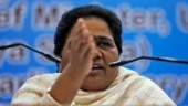 Didn't name BSP, any other party for alliance in Madhya Pradesh elections: Congress