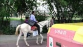 Not happy with work and traffic, software engineer resigns and rides horse to office on last working day