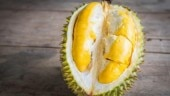World's smelliest fruit is being sent to space.