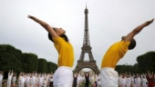 Craze for yoga turns into source of income for many