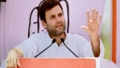 Rahul Gandhi rejigs CWC, brings in veterans ahead of 2019 election