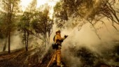 Northern California wildfire raging into its fourth day
