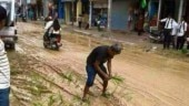 Viral Test: Photo of man sowing paddy on road not from Amethi, but Almora