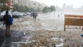 How Mumbai's Marine Drive turned into a necklace of trash