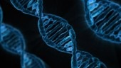 Gene which may help develop cancer treatment discovered and scientists want you to name it