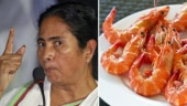 No mutton, tiger prawns for Mamata ministers at Nabanna, thanks to austerity